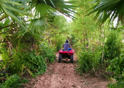 Riding Quads in the Jungle